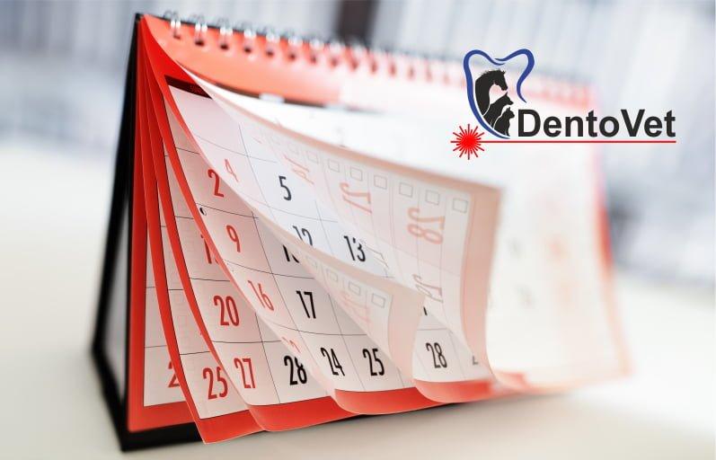 Controlul stomatologic anual