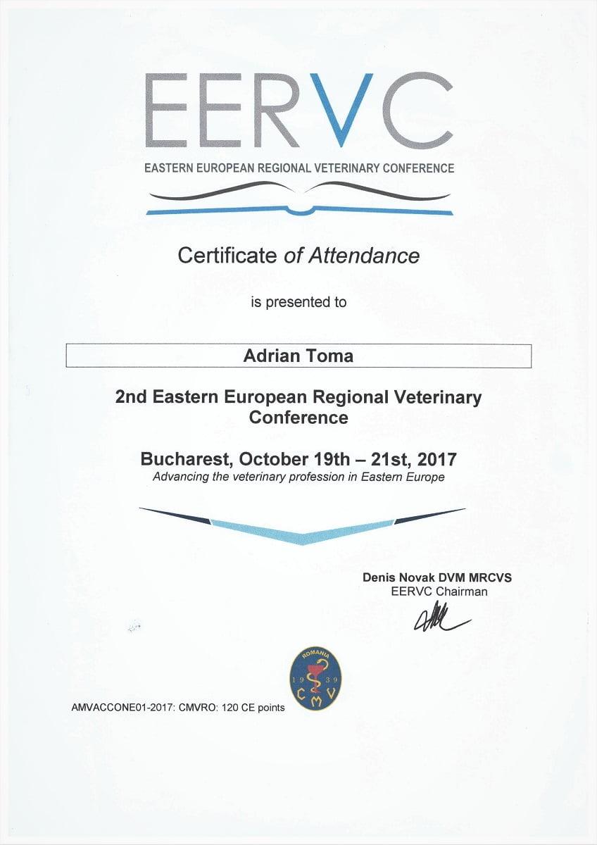 Conferinta EERVC 2017