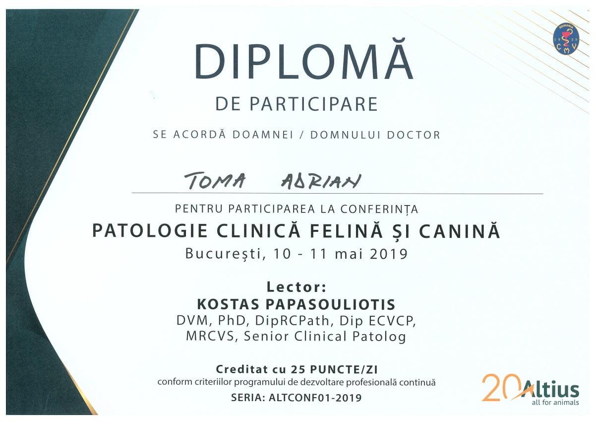 Certificări de stomatologie veterinară Conferinta de patologie clinica canina si felina