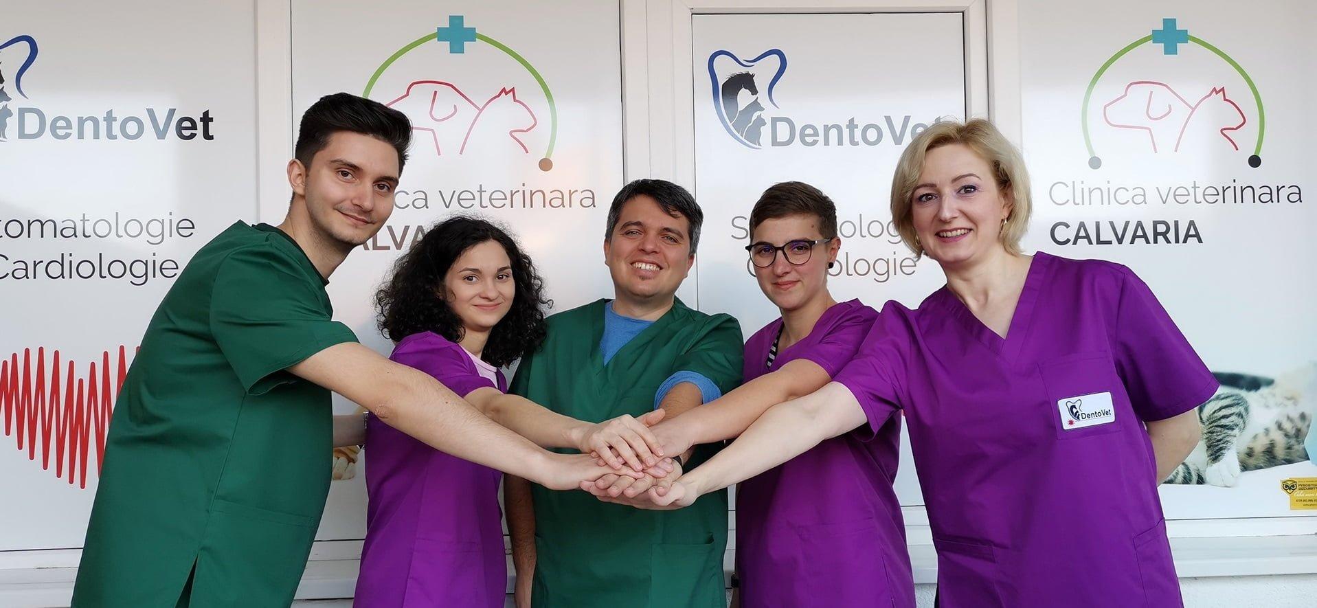 echipa interdisciplinară medic veterinar – medic stomatolog