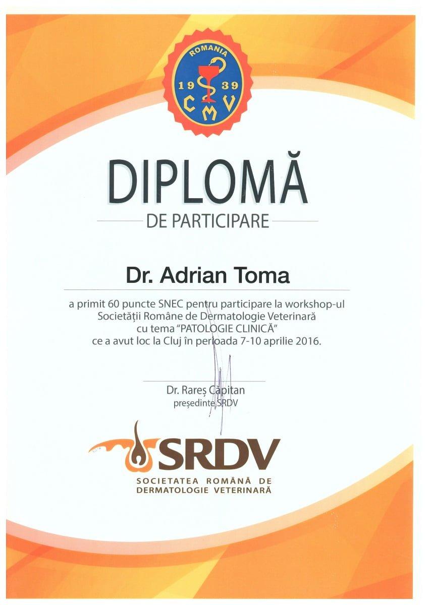 Certificări de stomatologie veterinară Workshop patologie clinică în dermatologia veterinară
