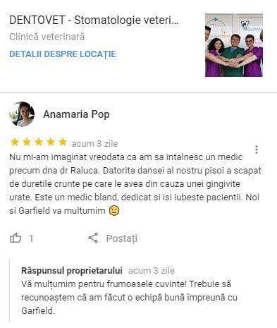 AnaMaria Pop - Recenzie Google