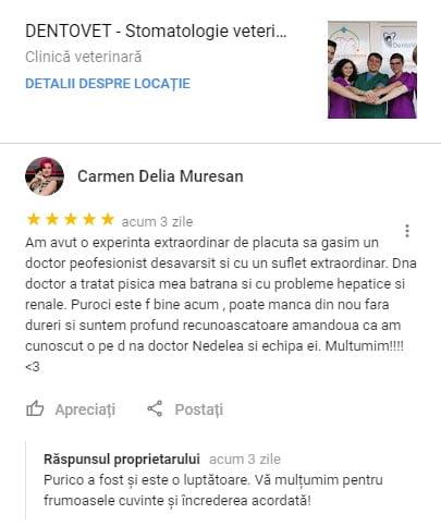 Carmen Delia Muresan - Recenzie Google