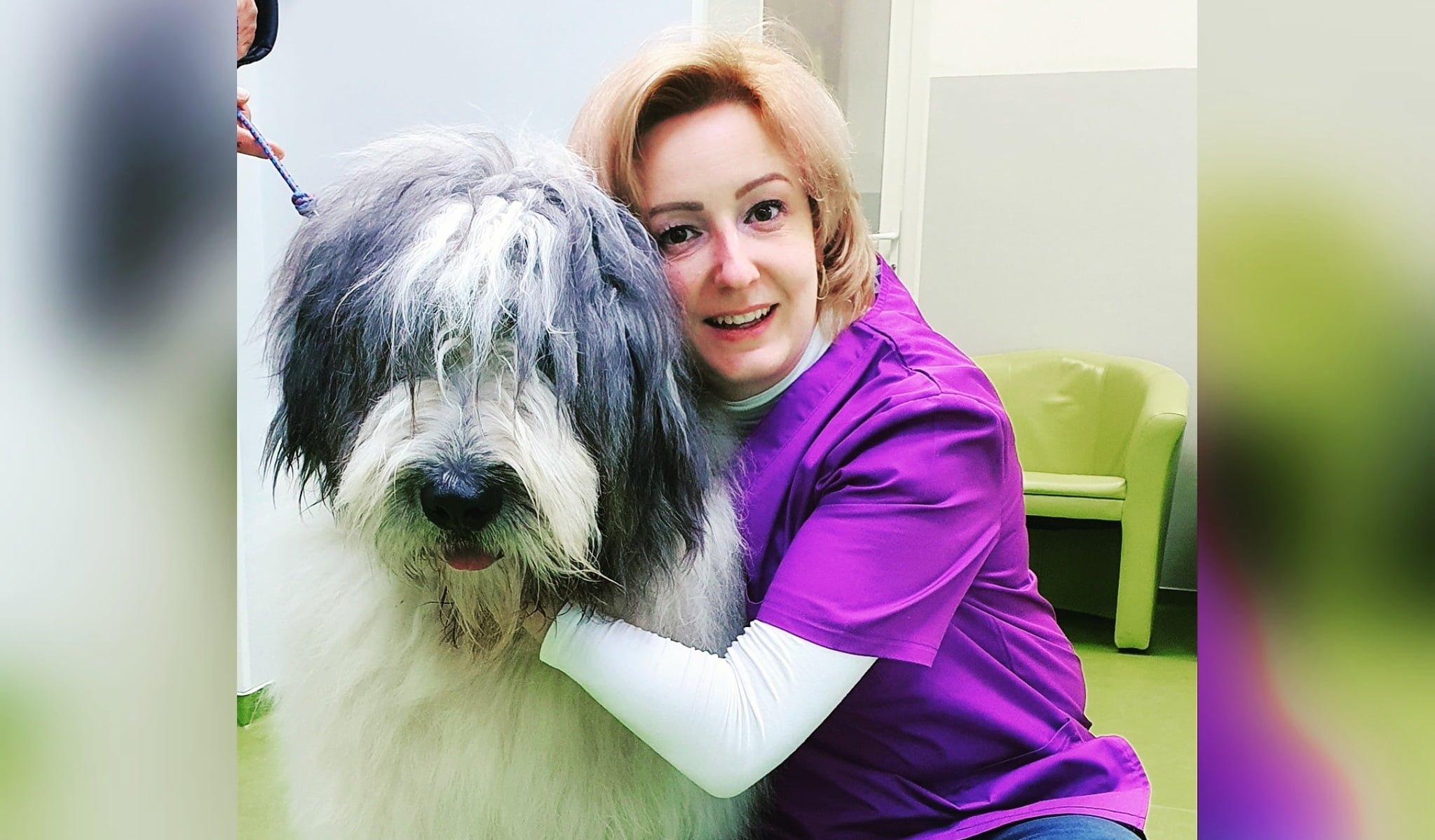 Luna sănătății orale la animalele de companie