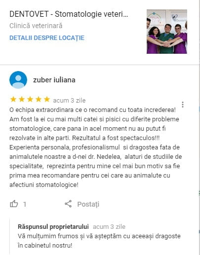 Zuber Iuliana - Recenzie Google