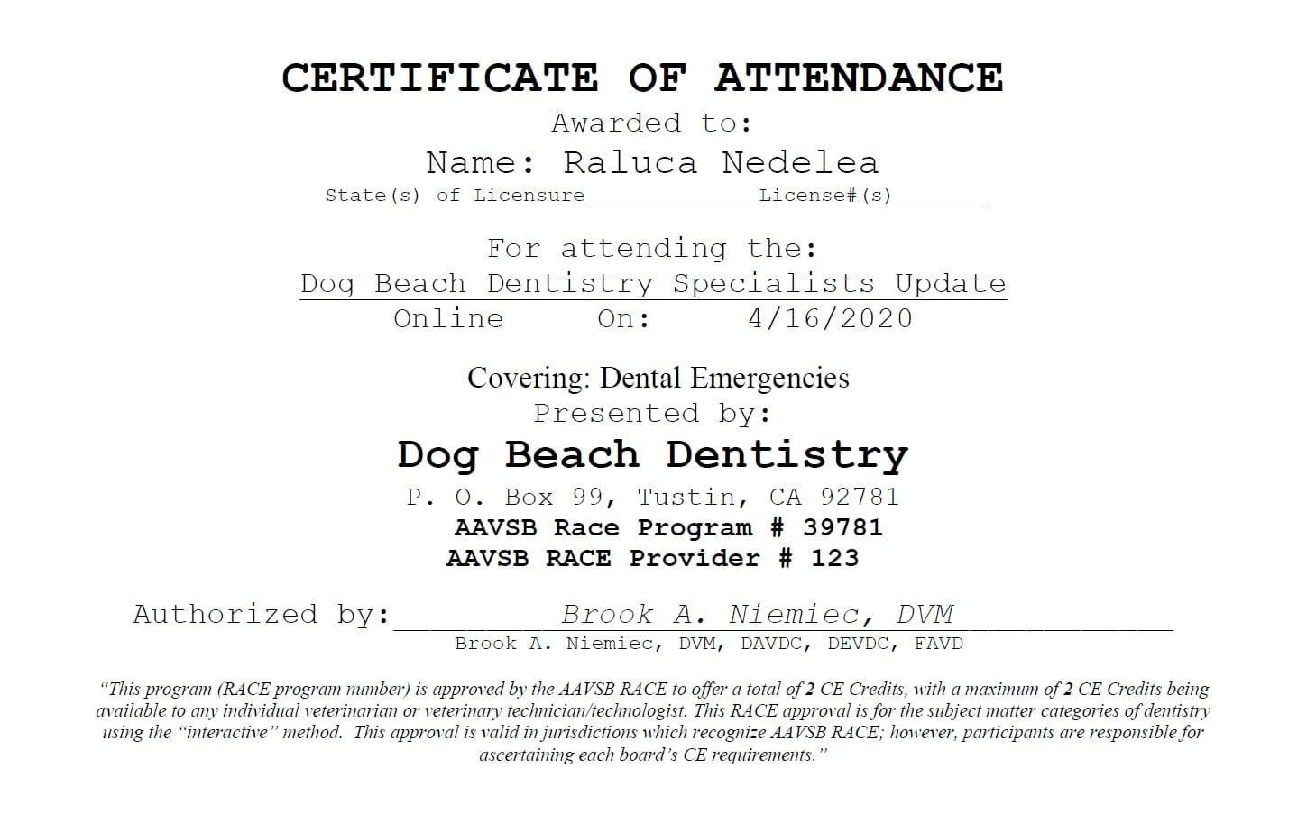 Dog Beach Dentistry Specialists Update 2020