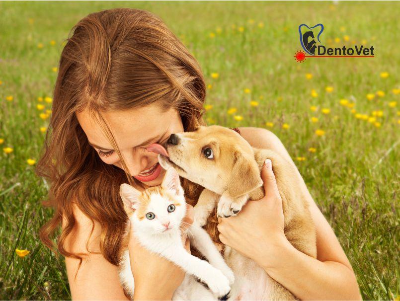Pediatria stomatologică veterinară canină și felină - final