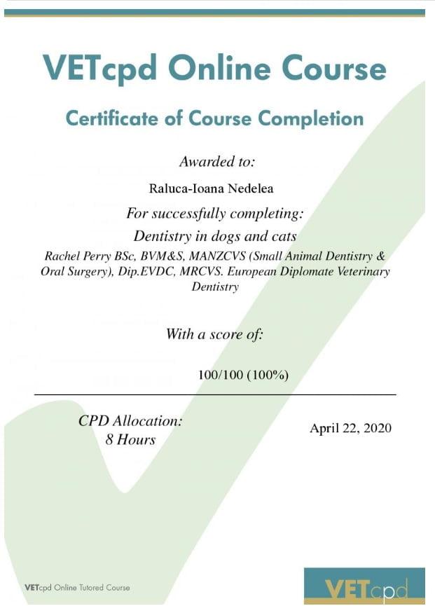 Certificări de stomatologie veterinară VETcpd Dentistry in dogs and cats