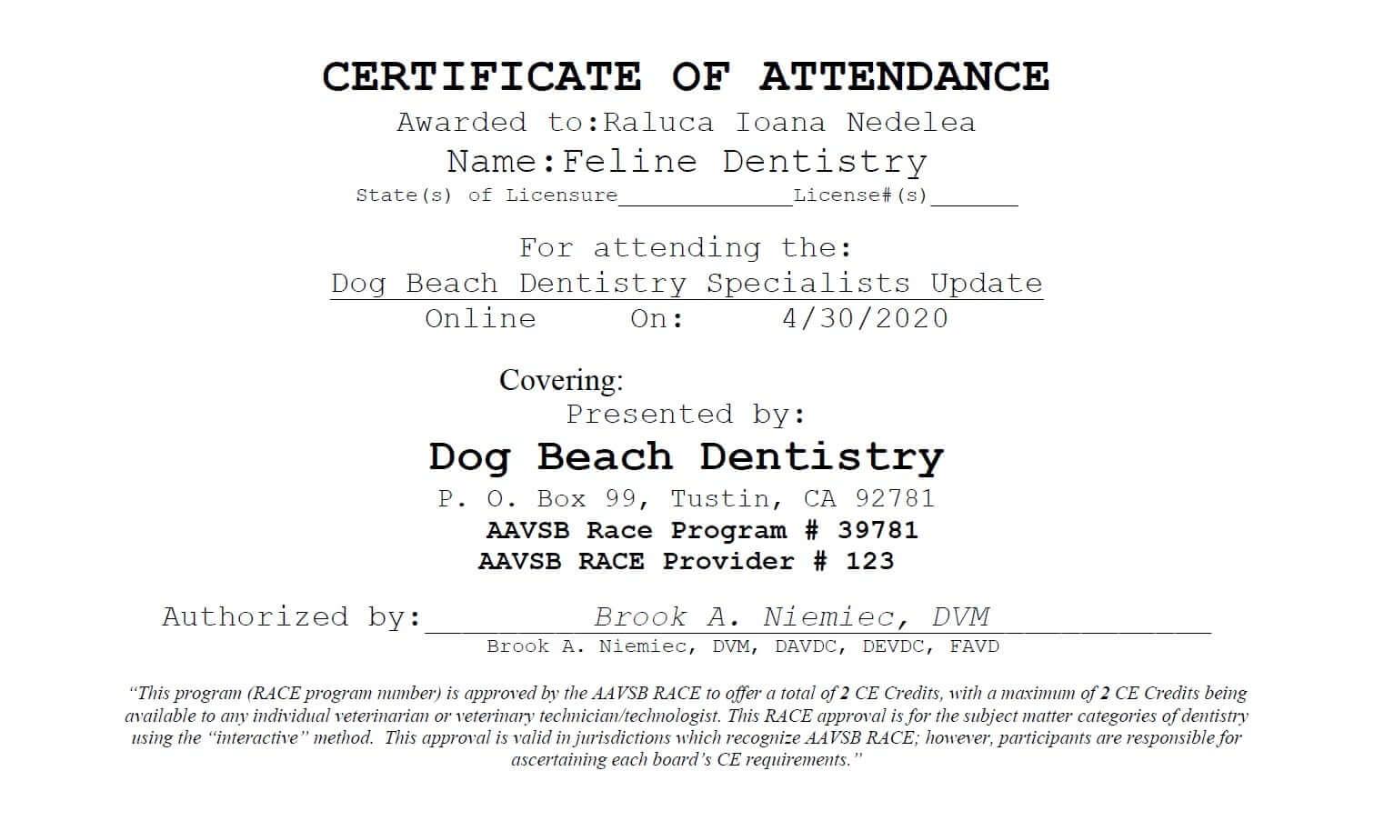 Certificari Dog Beach Dentistry 2020