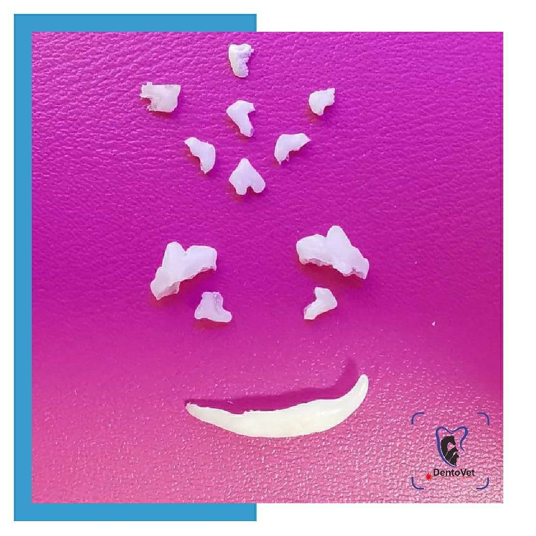 Persistenta dintilor temporari - dinti zambind