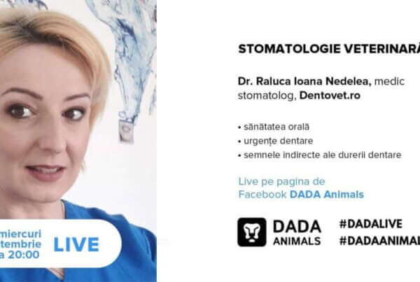 Dentovet live la DADA Animals