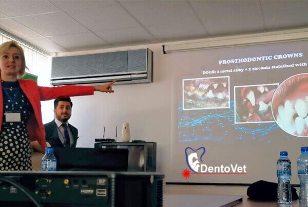 Stomatologie veterinara Dentovet la Stara Zagora