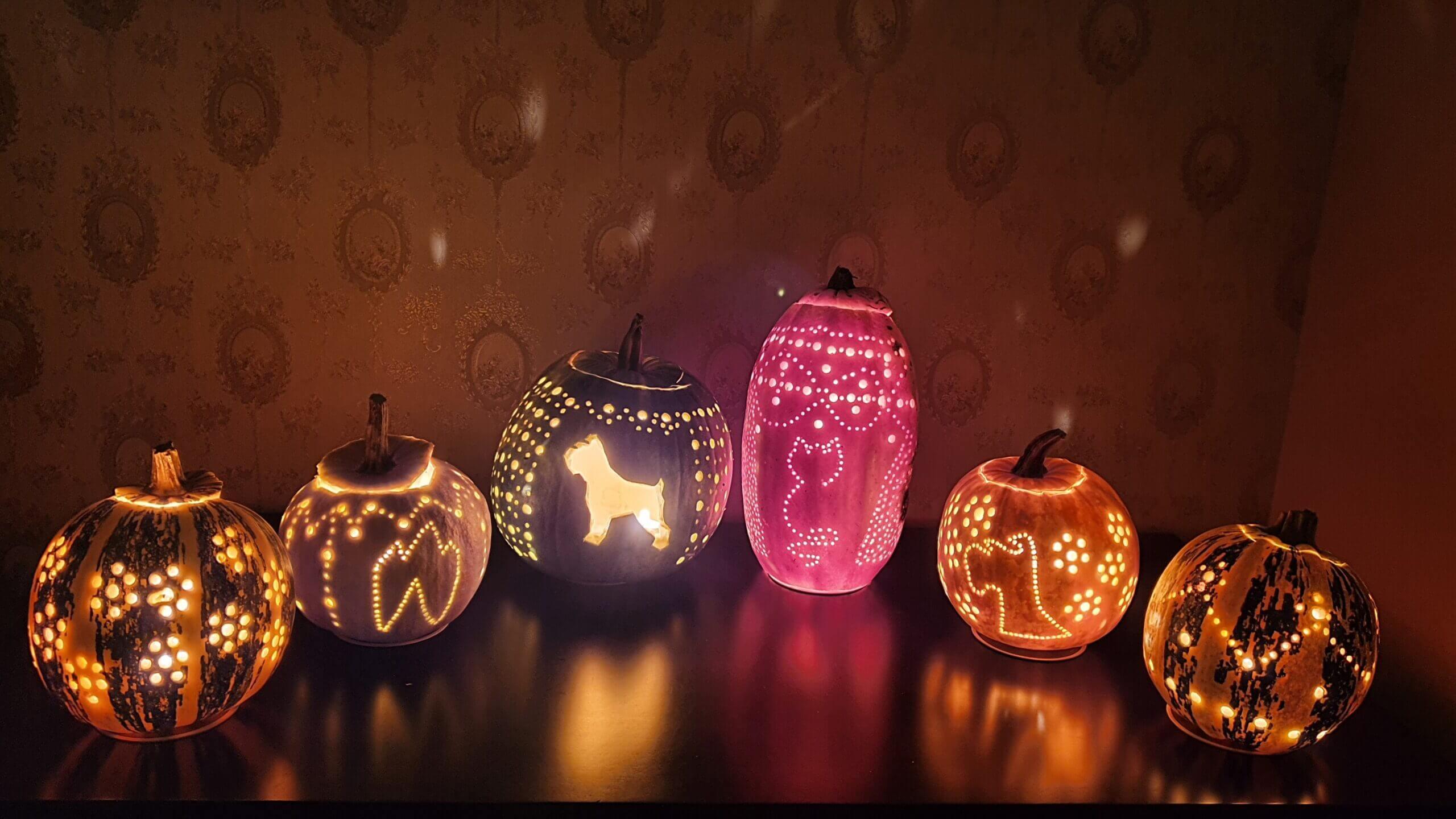 Halloween Dentovet final